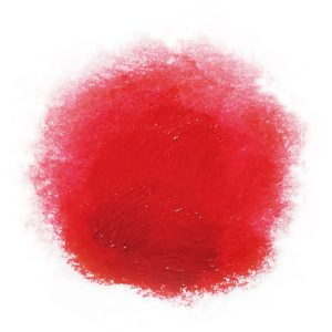 Akua Liquid Pigment Scarlet Red