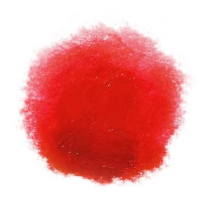 Caligo Safe Wash Relief Ink Napthol Red