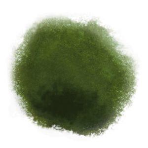 Schmincke Aqua Linoprint Chromium Oxide Green