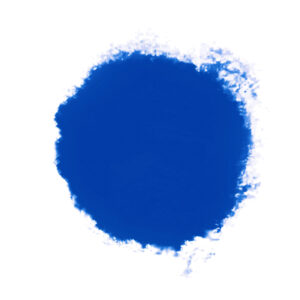 Speedball Professional Relief Ink Limited Edition Hoppin' Holland Blue